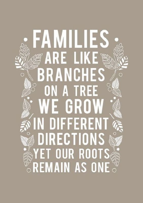Families are like branches on a tree, we grow in different directions yet our roots remain as one. -Unknown